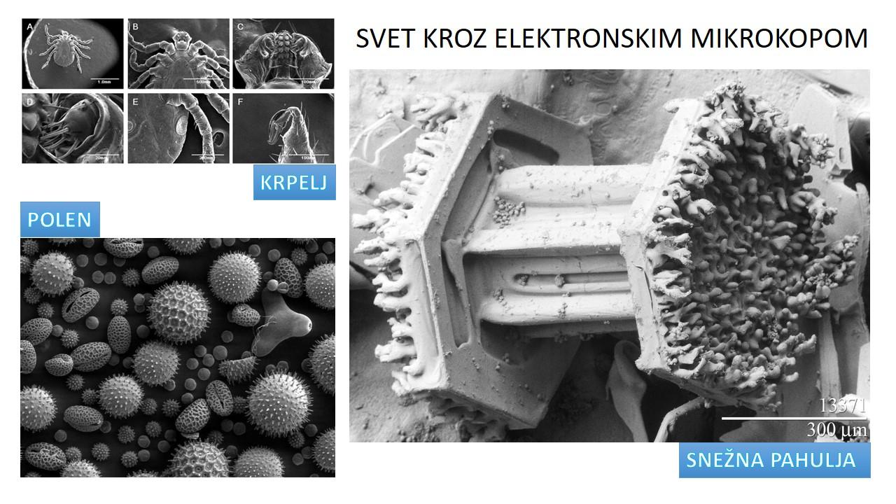 Laboratorija i laboratorijski instrumenti